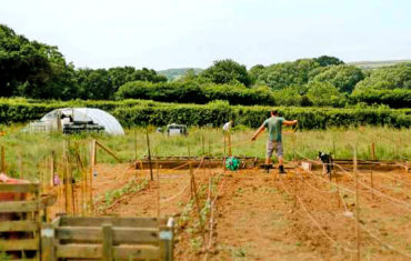 Tamar Grow Local farm-start tenant to be featured in national television show.